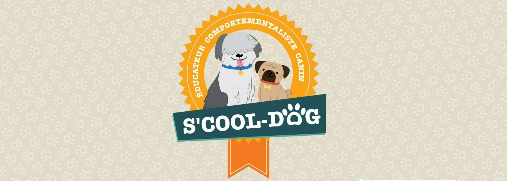 banner-scooldog-ecran-medium